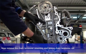 Blue Print Timing Chain replacement video